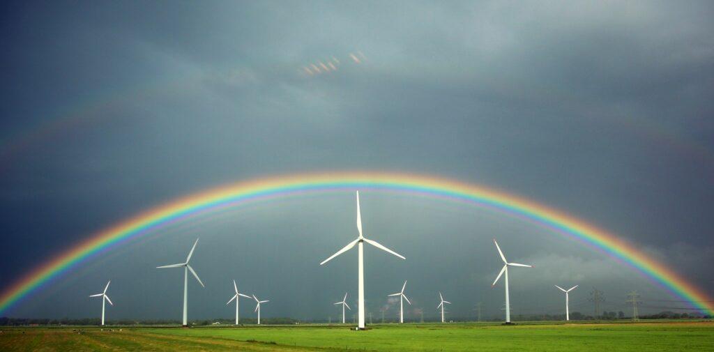 Ökostrom macht die Hälfte des Stromverbrauchs aus